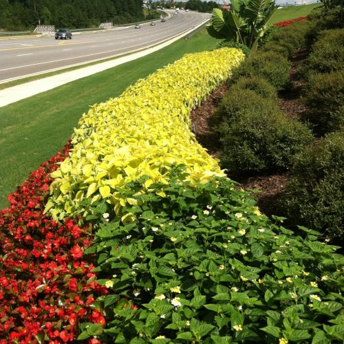 street flowerbed installation