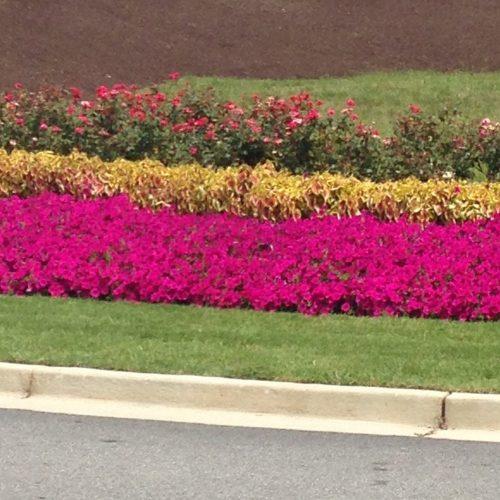 floriculture curb design