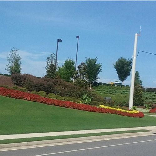 Epps Bridge Centre entrance landscaping
