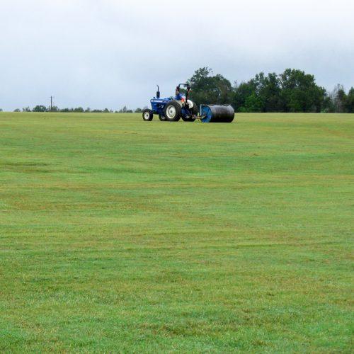 tractor on turf farm