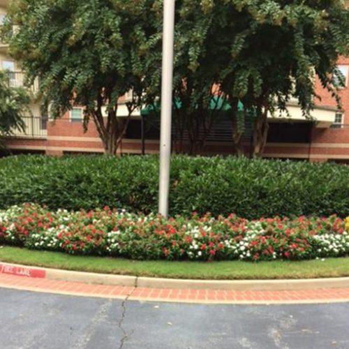 Floral Landscape maintenance
