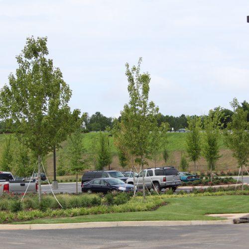 Epps Bridge Centre parking lot landscape design